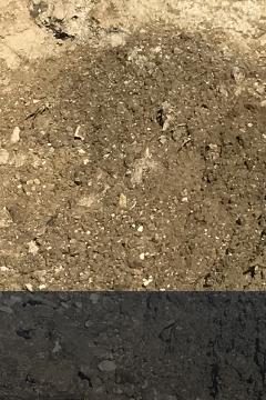 Terre mouillée